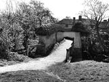 Blewbury Walls