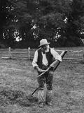 Farming  Mowing 1899