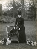 Queen Alexandra and Dogs