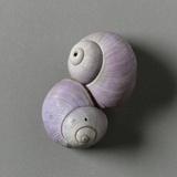 Violet Shells