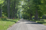 Country Road Berkshires MA Photo Poster