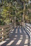 USA  Florida  Orange City  Blue Spring  Blue Spring Sp  Boardwalk