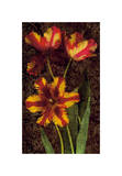 Decorative Tulips I