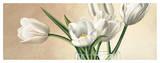 Vaso con Tulipani Bianchi
