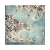 Aqua Blossoms II