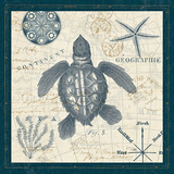 Ocean Life VI