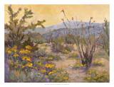 Desert Repose IV