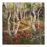 Four Seasons Aspens I