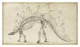 Dinosaur Study III Giclée par Ethan Harper