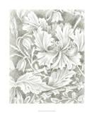 Floral Pattern Sketch I