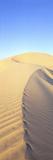 Mungo Dune Vert