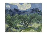 Van Gogh, Olive Trees Giclée