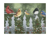 Winter Birds on a Snowy Fence