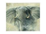 Storm Elephant