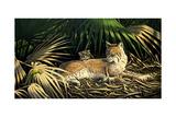 Sunny Spot Bobcat with Kittens