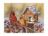 Winter Birds Buffet