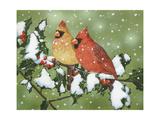 Wintery Cardinals