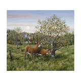 Whitetails under the Apple Tree