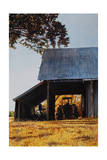 Barn W Tractor