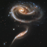 """A """"Rose"""" Made of Galaxies Highlights Hubble's 21st Anniversary Papier Photo"""