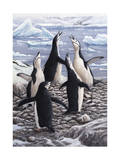 Chorus Chinstrap Penguins