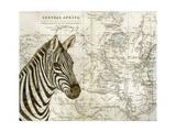 Burchell's Zebra Reproduction d'art par Jane Wilson