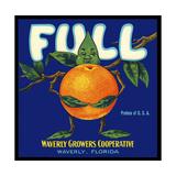 Full Florida Citrus