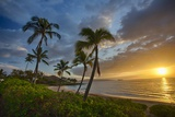 Sunset on Southern Maui Beach with Palm Trees