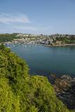 View of Polruan from Fowey