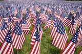 20 000 American Flags for Memorial Day  Boston Commons  Boston  MA