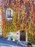 Autumn Foliage around Tuscan Villa