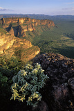Chapada Dos Guimaraes Mountain Range