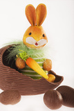 Toy Bunny in Hollow Chocolate Egg