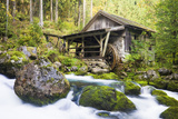 Small Wood Watermill and Brook