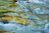 Mountain Brook Impression  Vintgar Gorge  Bled  Triglav National Park  Julian Alps  Slovenia