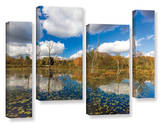 Beaver Marsh  4 Piece Gallery-Wrapped Canvas Staggered Set