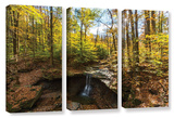 Blue Hen Falls  3 Piece Gallery-Wrapped Canvas Set