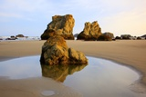 Sunrise Tide Pools at Low Tide  Bandon Beach  Oregon  USA