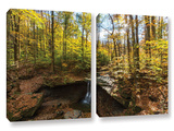 Blue Hen Falls  2 Piece Gallery-Wrapped Canvas Set