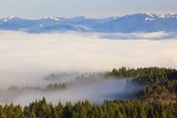 Morning Fog Covers Hood River Valley  Oregon  USA