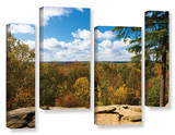 Virginia Kendall  4 Piece Gallery-Wrapped Canvas Staggered Set