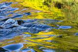 Colorful Water Surface