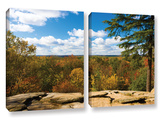 Virginia Kendall  2 Piece Gallery-Wrapped Canvas Set
