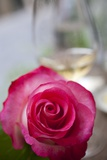 Restaurant  Paris - Pink Roses on the Table