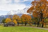 Autumn Colors by Mountain Range