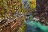 Mountain Brook with Wooden Footbridge through Canyon  Vintgar Gorge  Bled  Triglav National Park  J