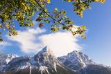 Mountain Range in Autumn