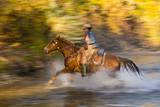 Cowgirl Riding through River on a Horse
