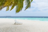 Beach Scene in the Maldives
