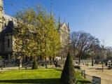 La Cite  Small Garden near the Cathedrale (Cathedral) De Notre Dame